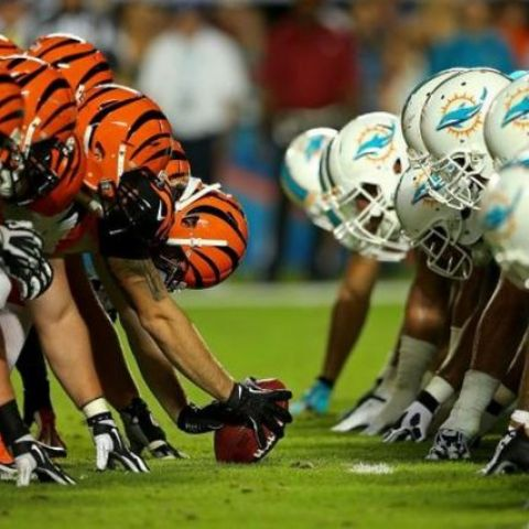 NFL Football Betting Preview and Prediction: Dolphins vs Bengals