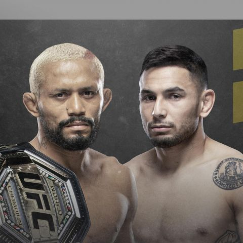 UFC 255 Odds: Will The Flyweights Have New Champs?